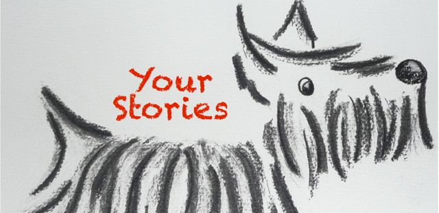 yourstorieshdr