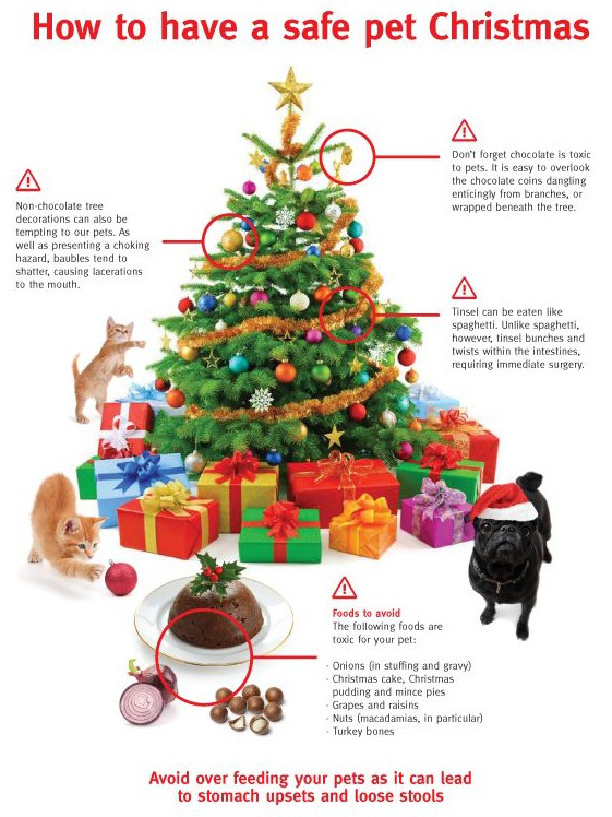 lintbells_xmas_infographic