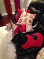 03 kyla hatfield roark both in sweaters