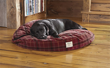 orvis dog bed