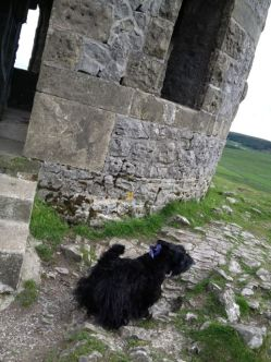 Bobby at the Soloman's Temple, Buxton, Derbyshire
