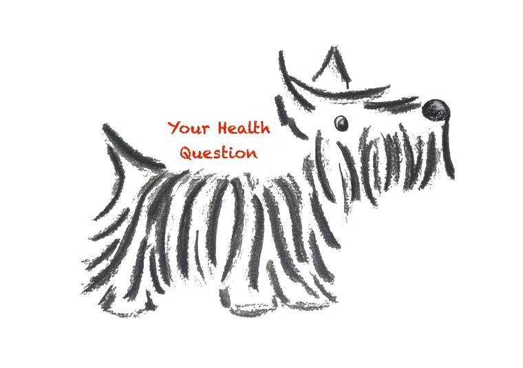 health question photo copy
